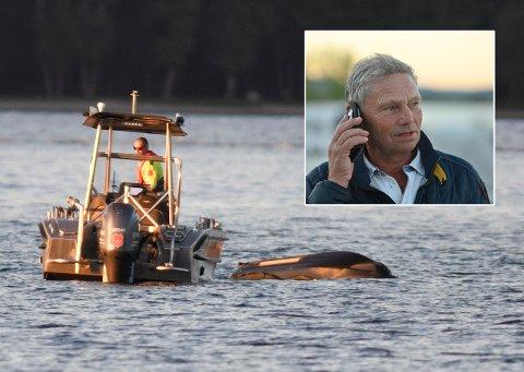VARSLET: Erik Hægstad ringte brannvesenet da han så en kantret scooter og hørte rop om hjelp fra fjorden.