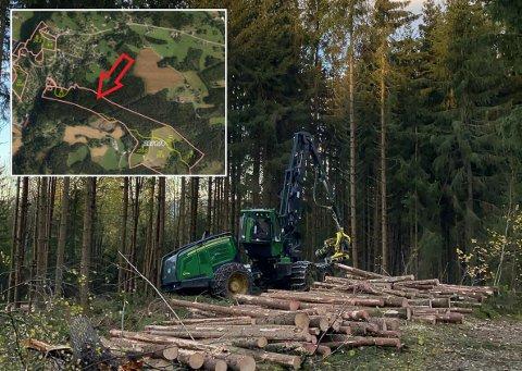 ARBEID: Dårlig vær har gjort det vanskelig for Glommen Skog å holde det pent og rydding mens de har hogget skog for grunneierne i området.