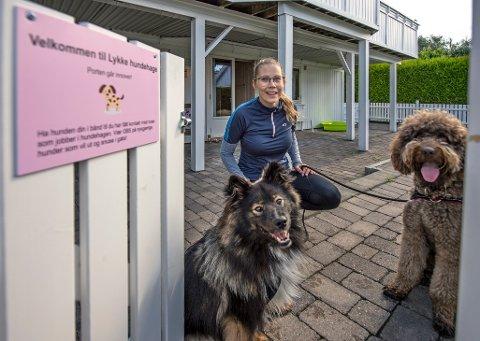 Lykkelige: Det er ingen tvil om at den finske lapphunden Malte (til venstre) og den australske cobberdogen Fred stortrives i Lykke hundehage hos Malene Isaksen på Lundheim, Østsiden. Her får de tur, selskap og kos.
