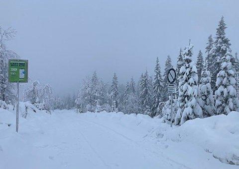 PARKERING: Bra med snø på Bislingen, med muligheter for parkering.