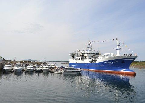 STASELIG BÅT: Ringnotfartøyet MS «Åkerøy», styrt av fiskeriministeren, kommer sigende inn i havna.