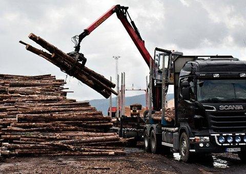 Ordfører Elin Gran Weggesrud vil ikke ha en enste tømmerbil via Sande.