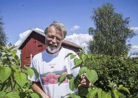 Skjøre planter: Bringebærplantene er skjøre, noe som gjør at bringebærbonden ikke har selvplukk.