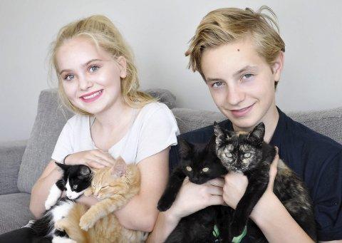 Kattungene hviler trygt i Mina (snart 13) og Mathias' (14) trygge favn.