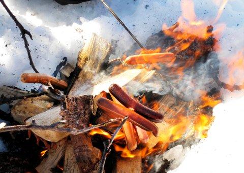 ULOVLEG: Frå og med i dag er det ikkje lov å gjera opp bål nær skog og annan utmark.  Foto: Gorm Kallestad / SCANPIX