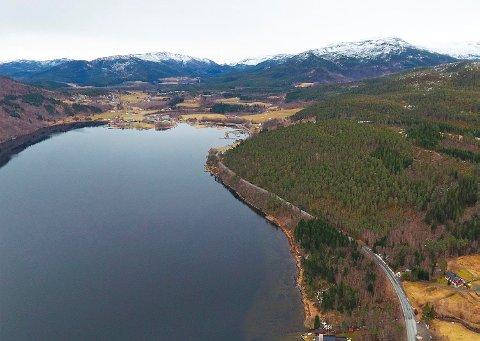 E39: Det skal bygges ny europavei langs Vinjefjorden og forbi Vinjeøra i Heim kommune. Nå er planprogrammet ute på høring, der det først og fremst skal avklares om hvor veien skal legges forbi Vinjeøra.