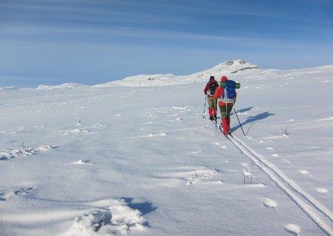 På viddene: Februar baud på herlege tilhøve for skiturar også utanfor oppkjørte løyper. Her på ein runde inn mot Svarthamartinden i Øystre Slidre.