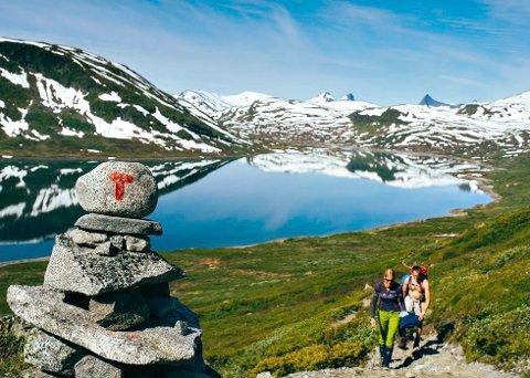 Fjellsommereen starter i dag, lørdag 24. juni.