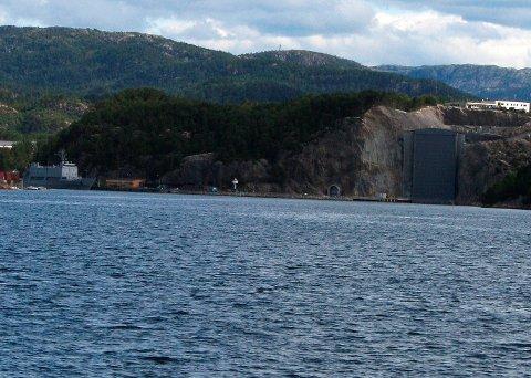 Det var i området nær marinebasen Haakonsvern i Bergen at vaktbåten skal ha fått et lite hyggelig besøk av den sprutende vannskuteren.