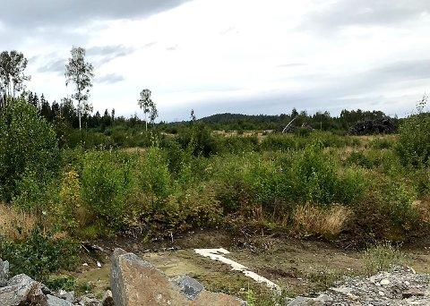 NÆRINGSOMRÅDE: Modum FrP er enig med SV i at det er bedre å satse på næringstomter i dette området ved Vikersund nord.