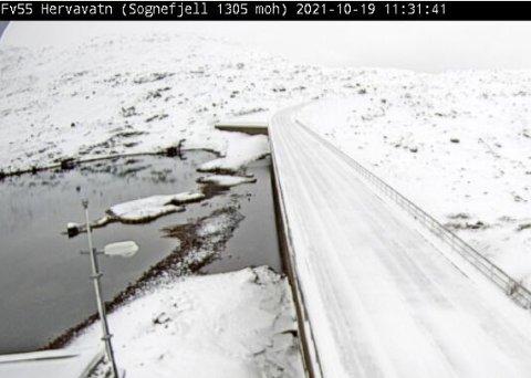 Fylkesveg 55 Sognefjell ved Hervavatn på 1305 moh.