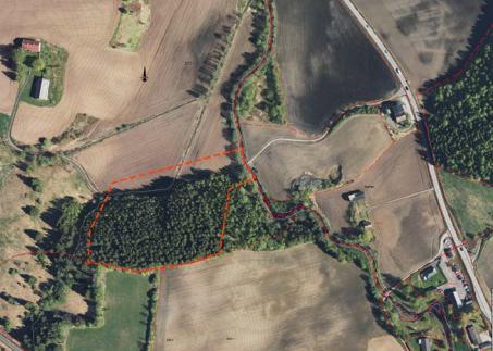 Markert: Området ved kommunegrensa er markert med rødt. Dagens riksveg 4 til høyre i bildet.