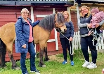 Fra venstre: Bente Heitmann, Frida Fredriksen, Marita Kind Myreng og Maja Myreng Einem. Nordlandshesten Birk ville også være med på bildet.    Hesten er nordlandshesten/lyngshesten Birk.