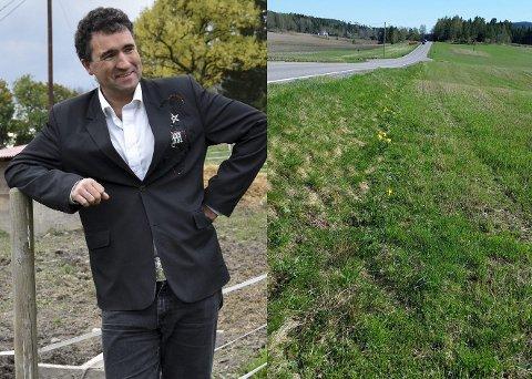 Petter Simonsen er forundret over at dette området er blitt rensket for tulipaner.