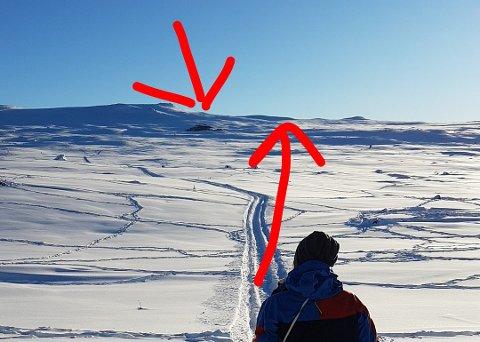 FLOKKEN: Her er Sara Elvelund Sandvik på Imingfjell i helga. Bildet er tatt av Anders Endresen. Pilen oppe til venstre viser hvor reinflokken er, mens den andre pilen viser den opprinnelige planlagte gåruten til paret. På grunn av blant annet en temperatur på minus 15 grader på fjellet, fikk ikke Anders tatt bilde av selve snøscooterne.