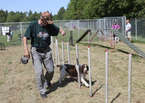Midt i Bjørntvedtskogen ligger Sletta hundepark, som er en inngjerdet oase for både hunder og eiere. – Dette har blitt en idyll. Her er det tre adskilte binger hvor hundene kan gå løse og bli sosialiserte, som igjen fører til mindre aggressive dyr, sier tidligere leder av Sletta hundeklubb, Olav Røyneland. Her får Basse virkelig testet sine agility-egenskaper.