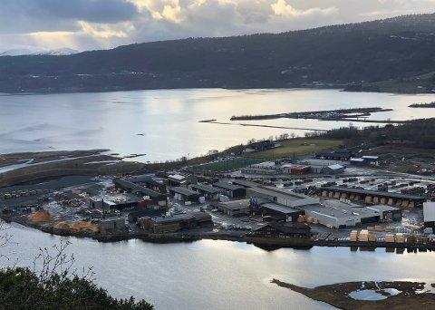 MIDTPUNKT: Talgø MøreTre med base i Surnadal er blitt sentral i debatten om brannegenskapene til trevirke som er royalimpregnert.