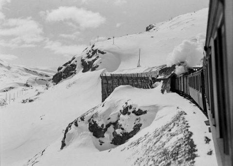 Skepsisen var stor til om det ville være mulig å drive en toglinje over høyfjellet gjennom «den evige is og sne». Tallrike undersøkelser av snømengdene ble gjennomført, men fagfolk kranglet i mange år om hva de innebar.