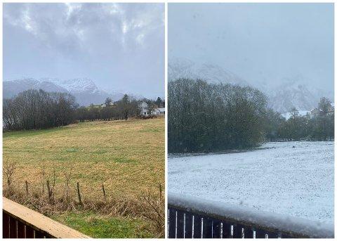 KVA ER KVA? Ein skulle ikkje tru at bilde til høgre var teke i mai, medan bilde til venstre er teke i desember. Det skil også 10 grader mellom desse bildene.