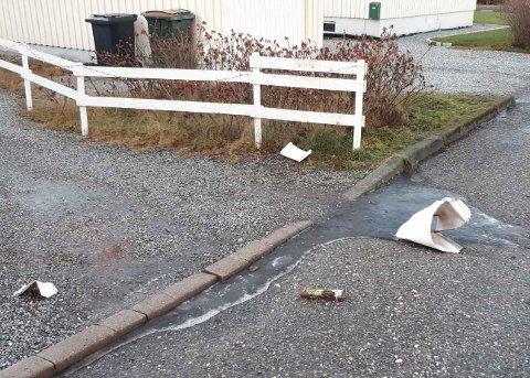 RAMPESTREKER: Flere postkasser ved Brødløs ble sprengt i natt. – Unødvendig, sier postkasseeieren.