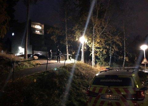 JAKTET: Bevæpnet politi jaktet gjerningspersonene etter knivstikking i nordre bydel. Nå er to personer varetektsfengslet.
