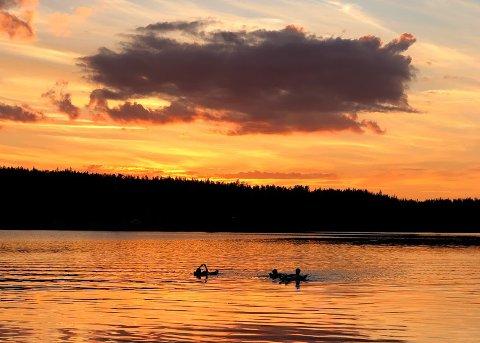 HYTTER MED STRØM: 22 hytter og hyttetomter ved Skumsjøen skal få tilgang til elektrisitet.