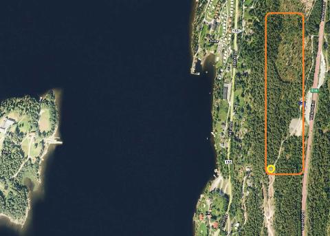 AKTUELT STED: - Markert med oransje er oversikt over naturområdet der et minnesmerke kan plasseres, sier Maria Holtane-Berge og Anne-Gry Ruud i dette innlegget.