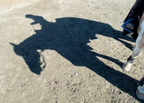 HESTESVINDEL: En kvinne fra Øst-Telemark måtte nylig møte i tingretten, tiltalt for forsikringssvindel i forbindelse med at en hest ble skadet og senere avlivet.