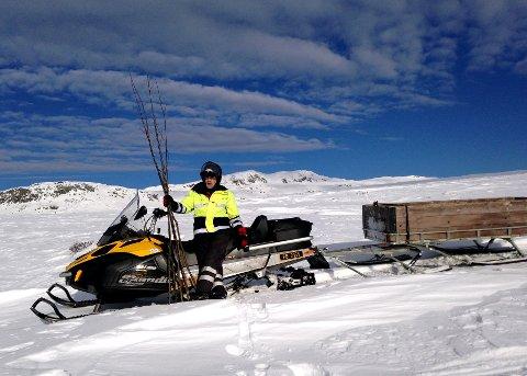 Kjørt opp: Arvid Kampesveen har jobben med å kjøre opp og kviste alle DNT-rutene i Langsua.
