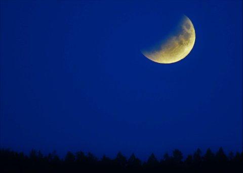 Månen i jordskyggen: Slik så månen ut over Fredrikstad-marka, cirka klokken 11 tirsdag kveld. (Foto: Øivind Lågbu)