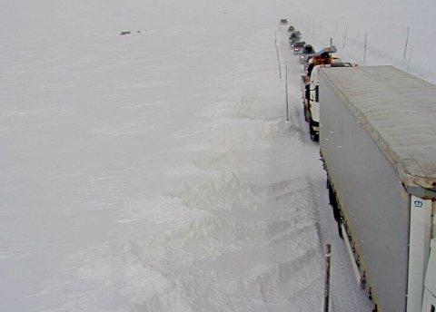 Kolonnekjøring ved Skulavika på riksvei 7 over Hardangervidden fredag ettermiddag.
