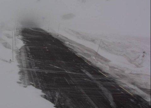 Slik såg det ut på Strynefjellet litt før klokka 14.00. Akkurat no er det kolonnekøyring, men vegen kan bli stengt på kort varsel.