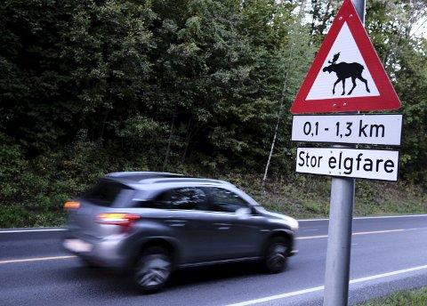 Skiltet om elgfare står der av en god grunn: Løper en elg ut i veien 20 meter foran deg i 80-sonen, har du bare ett sekund på å stoppe. Demp farten og vær ekstra årvåken bak rattet, oppfordrer forsikringsselskapet If. Foto: If