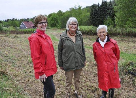 MIMRER: Ingeborg Sæthre (fra venstre), Torill Braaum og Bitten Nesbakken inviterer til mimring om hvordan 17. mai var da dagen ble feiret på Tomtehaugen i Brandbu.