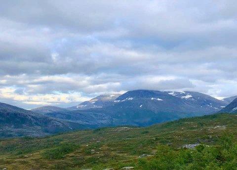 FLOTT UTSIKT: Reinfjellmarsjen jubilerer lørdag 5. september 2020. Marsjen har blitt arrangert i 50 år, og i år går løypa på Reinfjellet med start og mål på Sjåmoen. Utsikten er flott når man kommer opp på Reinfjellet.