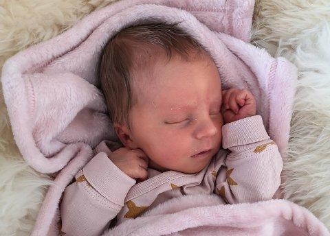 Tiril (1 mnd) fikk en tøff start på livet da hun ble født i en ambulanse mellom Mosjøen og Sandnessjøen.
