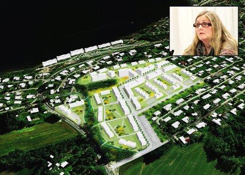 ENGASJEMENT: Mange har engasjert seg i saken om bygging på Solbergjordet. Her forklarer Christina Berg (Ap, innfelt) hvilke vurderinger hun har gjort i saken.