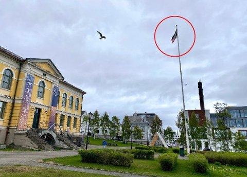 OMSTRIDT: «Oil spill» viser et norsk flagg tilgriset med olje. Flaggskjending, mener Høyre-politiker Gunnar Pedersen. Nå er flagget stjålet, skriver iTromsø.