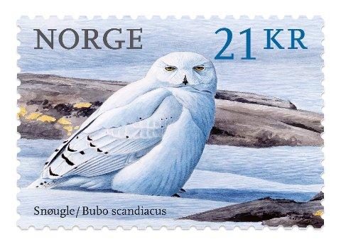 Frimerke: Snøugla malt av Viggo Ree er kåret til verdens vakreste frimerke utgitt i 2018.