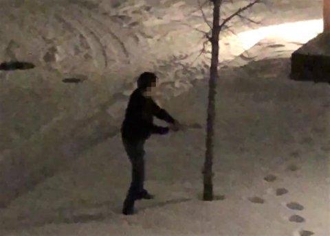 Hogger tre: Dette treet i Trekanten park hogg denne mannen ned natt til julaften. Mye tyder på at samme mann hogg ned juletreet som sto rett ved siden av. FOTO: POLITIET