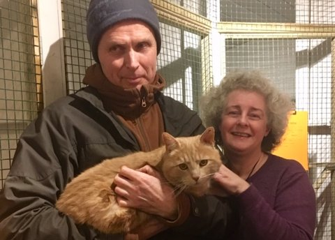 ETTERLENGTET GJENSYN: Nesten ett år etter at Merlijn Dorgelo sist så katten sin, Hoshii, kunne han hente den hos Linda Victor Thorsen i Dyrebeskyttelsen Sandefjord-Larvik.