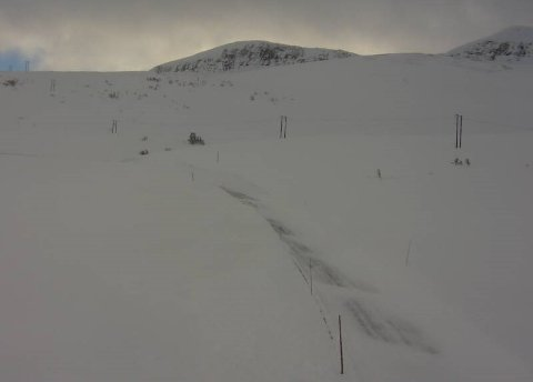 OPPRYDJING I GANG: Slik ser det ut ved Hestavollen på Vikafjellet klokka 09.57 i dag, måndag.