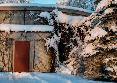 VANNVERK: Det private vannverkets høydebasseng ved Sangnes. ARKIV