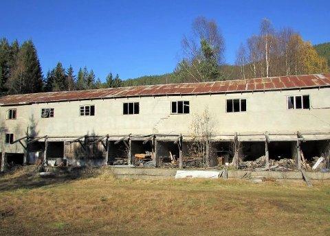 Sju svar: Etnedal kommune fylgjer opp forsøplingsproblema også i 2019. Sju av 15 svara, medan fire av desse sju allereie har rydda opp.