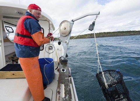 Årets høydepunkt: Søndag starter årets hummerfiske, noe veldig mange i Fredrikstad og på Hvaler gleder seg til. På bildet er Roy Jensen fra fjorårets hummerfiske.