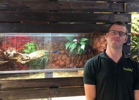 REPTILER: Ryno du Toit hos dyrebutikken Buddy får mange kunder innom som er interesserte i reptilene de selger.