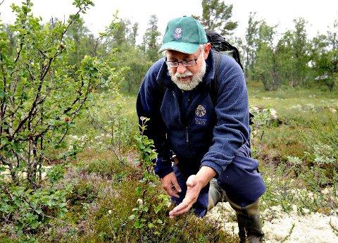 TRAGISK: Lars Inge Enerstvedt i Statens Naturoppsyn synes det er tragisk at et tilfelle av skrantesjuke er påvist på Hardangervidda.