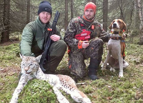Sigurd Øien og hundefører Joakim Nordnes med sin amerikanske foxhound Dexter med gaupa som ble felt i Vågå.