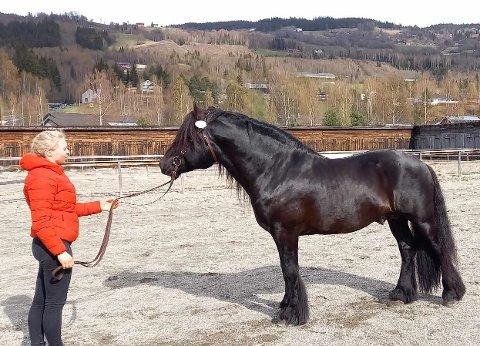 Midtgards Svarten tok 1. plass. Her saman med Marta Hofflundsengen, som har trent hesten det siste året.
