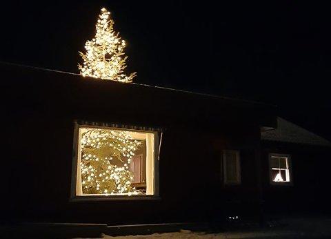 VAKKERT: Juletreet lyser opp i mørket.